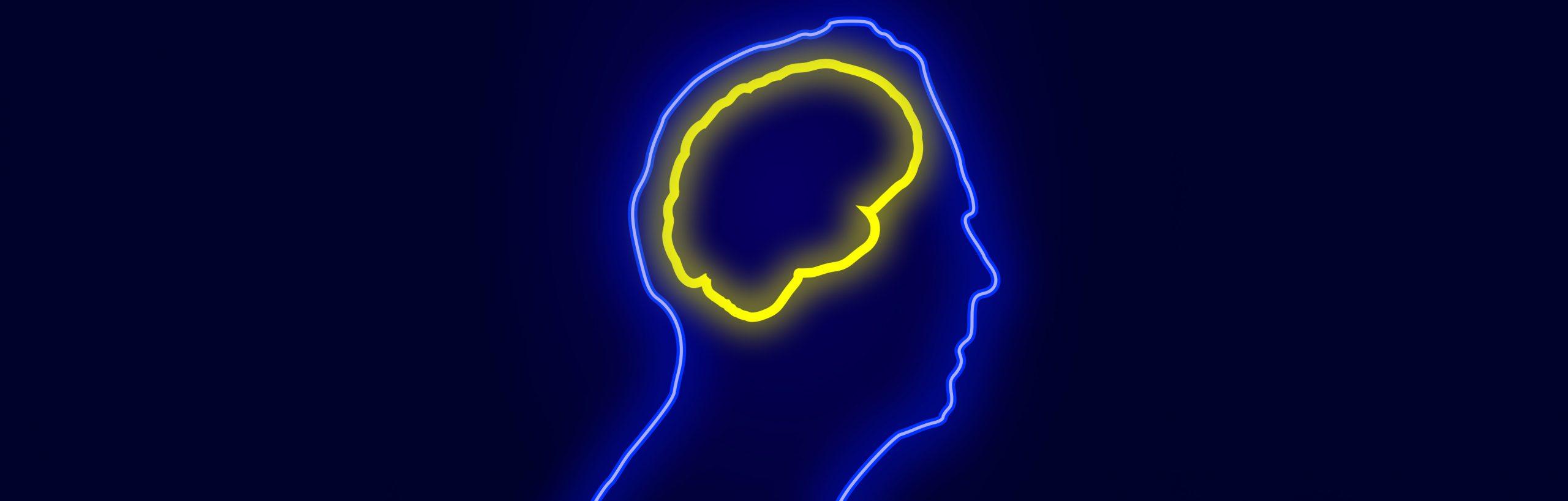 """Νοητικό απόθεμα: φτιάχνοντας το """"κομπόδεμα"""" του εγκεφάλου"""
